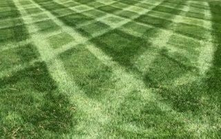 Lawn Services 11