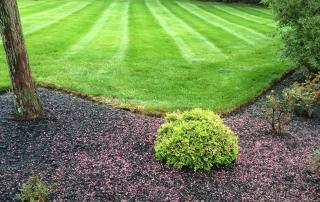 Lawn Services 12