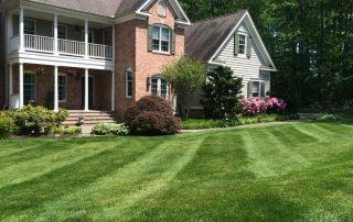 Lawn Services 9