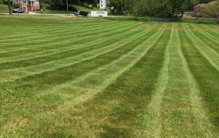 Lawn Services 10