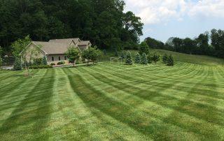 Lawn Services 13