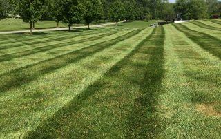 Lawn Services 16