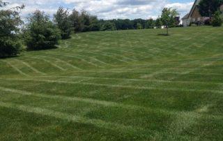 Lawn Services 20