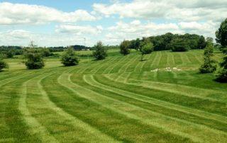 Lawn Services 21