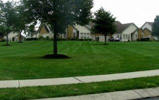 Lawn Services 25