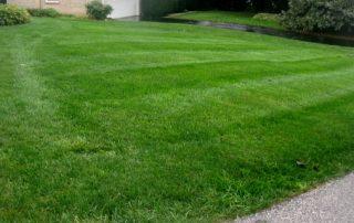 Lawn Services 26